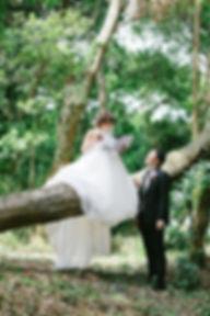 IMG_1152-L-480-karui.jpg