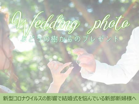 結婚応援企画!ぶどうの樹からWedding Photoプレゼント!