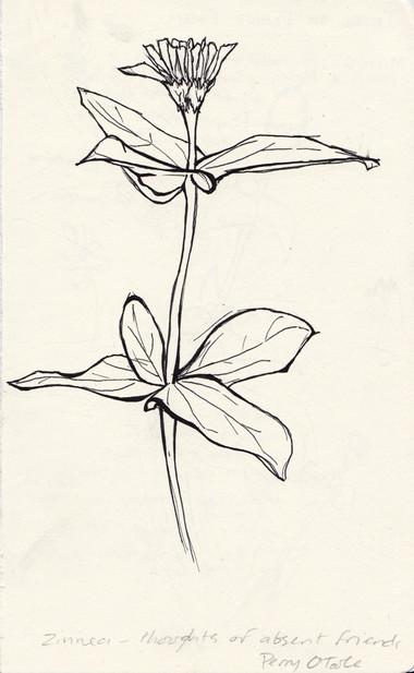 flor5.jpg