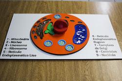 LF5290-1.jpg