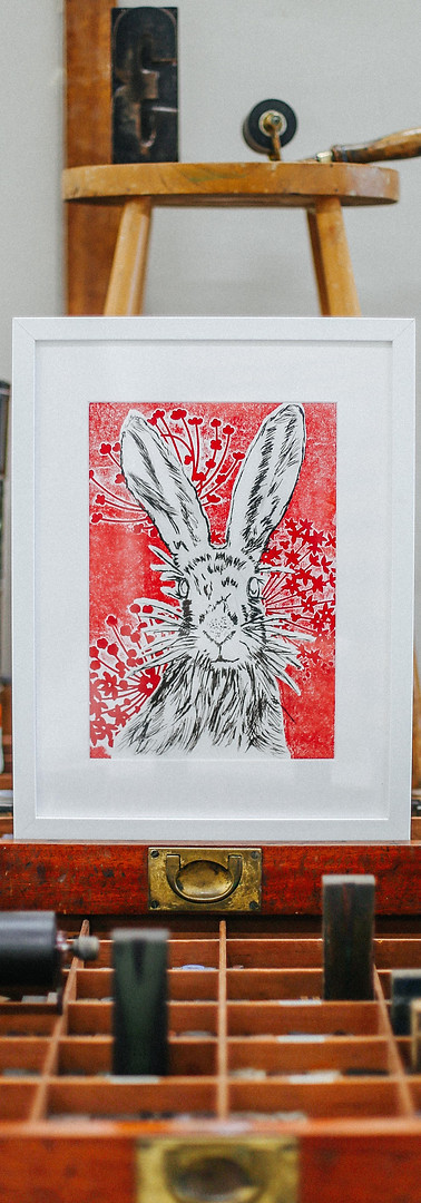 Hare By Rosy Ennis