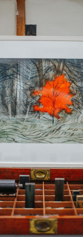 Red Tree By Catherine Thompson