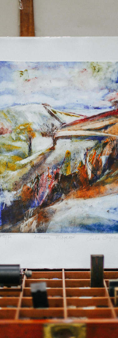 Autumn Hedgerow By Dierdre McCrory
