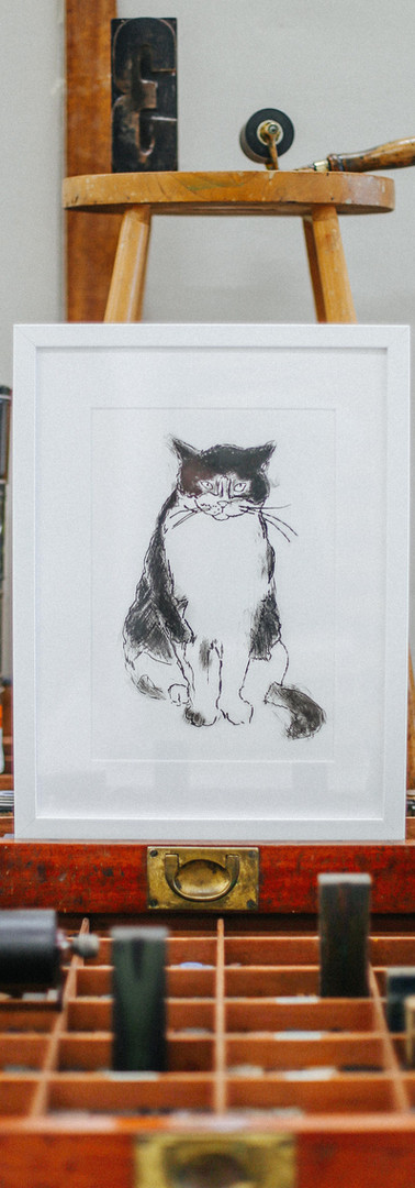 Cat By Rosy Ennis
