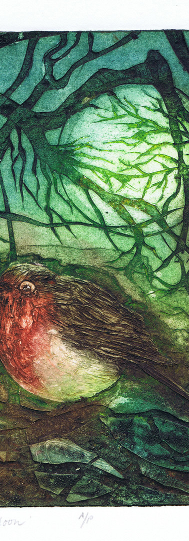 The Robin and the Moon By Alice Wyatt