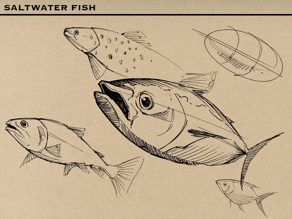 Fish M.jpg
