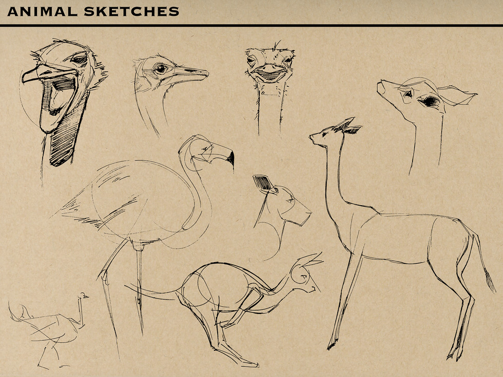 Animals M.jpg