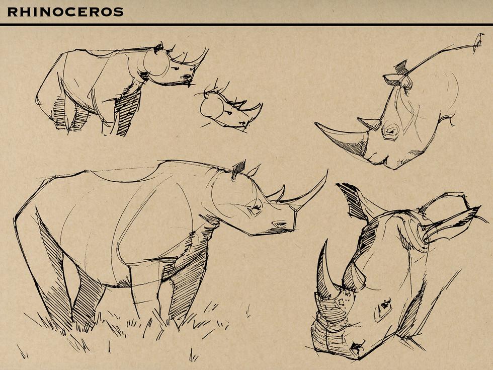 Rhino M.jpg