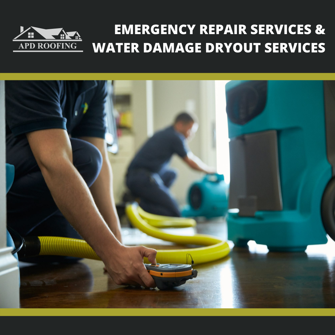 Water Damage Dry Out Services