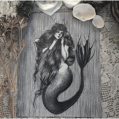 The Mermaid Queen
