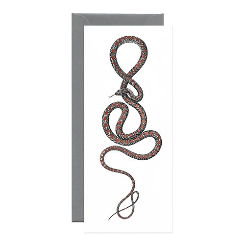 Open Sea - Paradise Flying Snake Greeting Card
