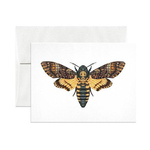Death's Head Hawkmoth Greeting Card