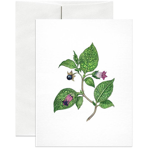 Open Sea - Deadly Nightshade Greeting Card