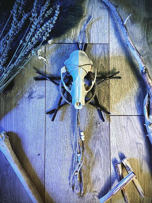 Starlight Raccoon Pentagram Wall Hanging