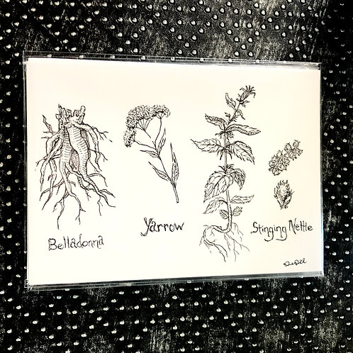 Witch's Herbs (5x7 print)