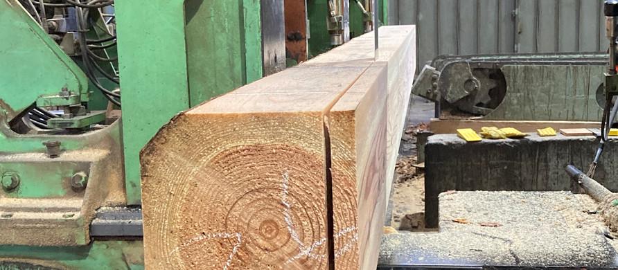 〜木になる木〜『いつも身近に木材を!!』杉シリーズ