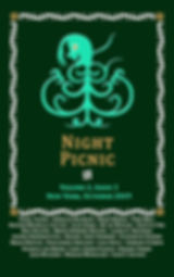 Night Picnic_Cover_v2i3 eBook.jpg