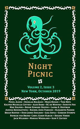 Night Picnic_Cover_v2i3 eBook.jpg