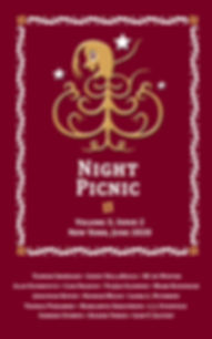 Night Picnic_Cover_v3i2 eBook.jpg