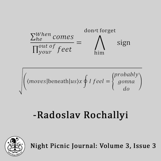 Poetry Novels Short Stories   Night Picnic Press