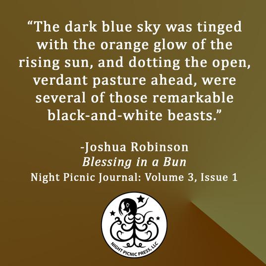 Joshua Robinson