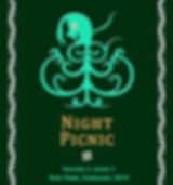 Night Picnic_Cover_v2i1 eBook.jpg