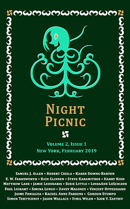 Night Picnic_Cover_v2i1 eBook.jpg