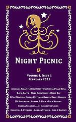 Night Picnic_Cover_v4i1 eBook.jpg