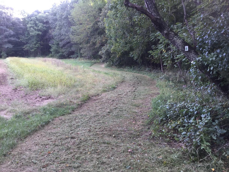 Mown grass trail along edge of farm field