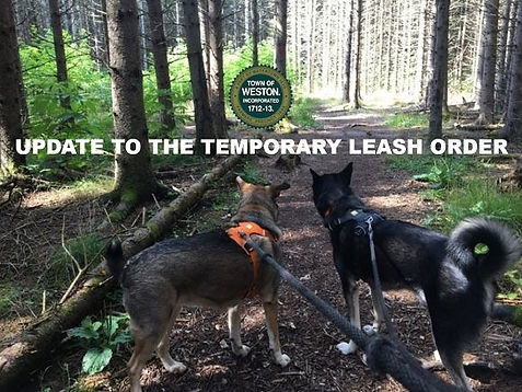 Update to the Temporary Leash Order
