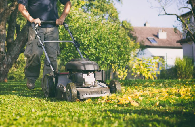 guy mowing a lawn with yellow leaves on it on a sunny day