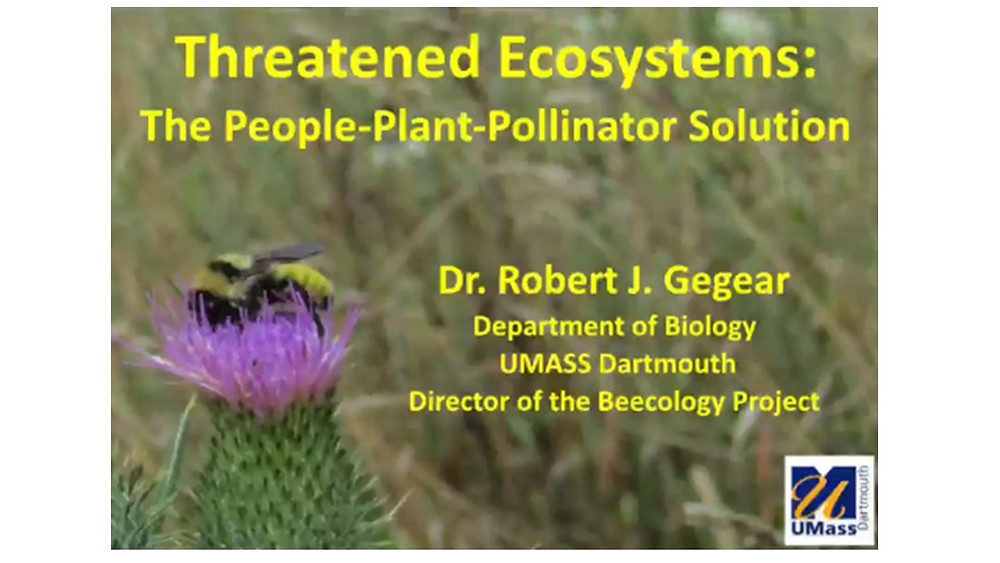 Threaten Ecosystems: The People-Plant-Pollinator Solution