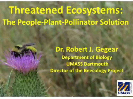 "Dr. Robert Gegear ""Threatened Ecosystems: The People-Plant-Pollinator Solution"""