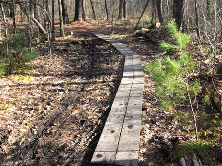 Ride dirt, not mud – spring cometh