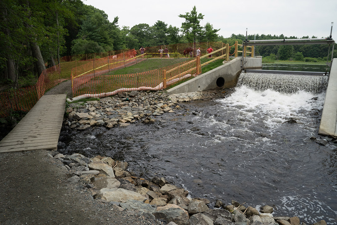 wooden bridge, outlet and spillway