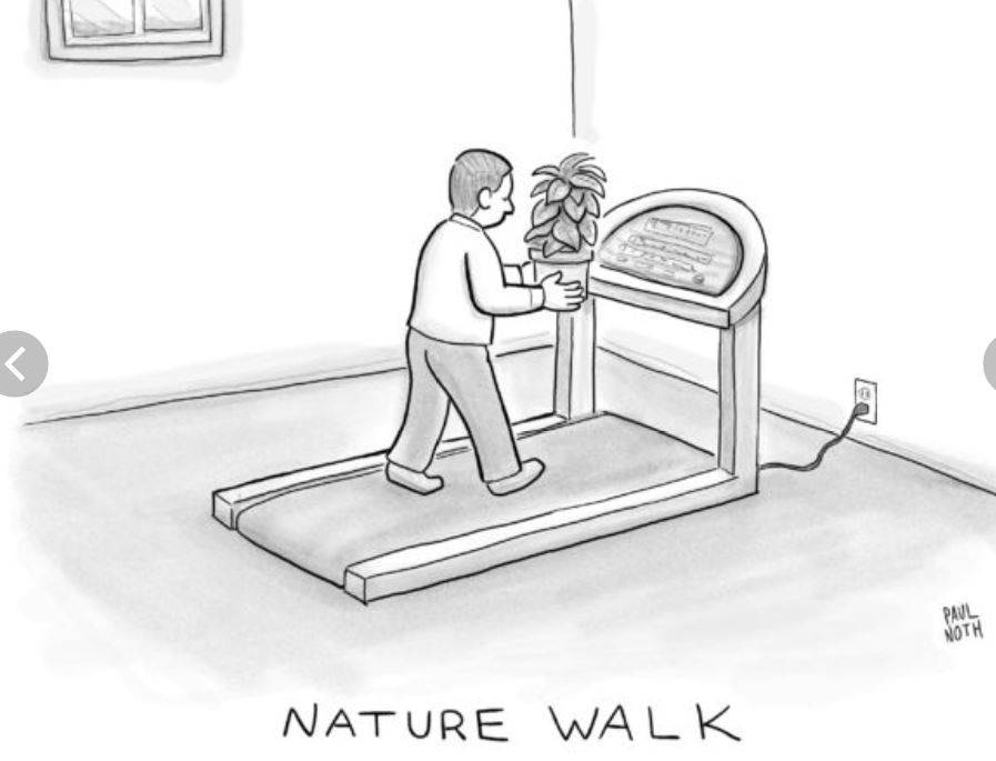 """comic of a guy on a treadmill holding a houseplant in front of his face, captioned """"NATURE WALK"""""""
