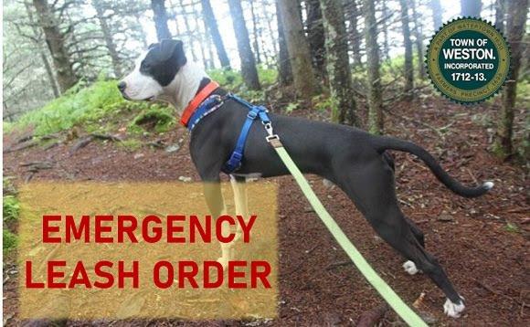 Emergency Leash Order
