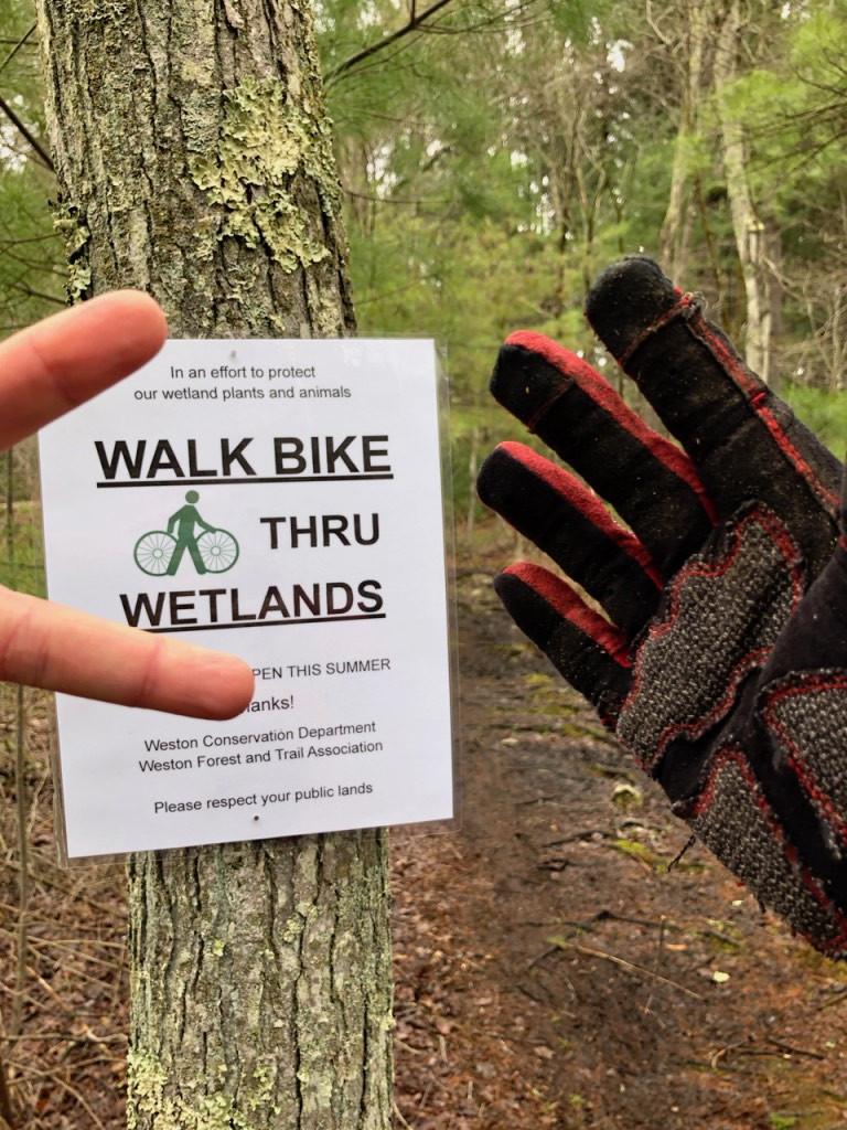 "Sign on tree: ""Walk Bike Thru Wetlands"""