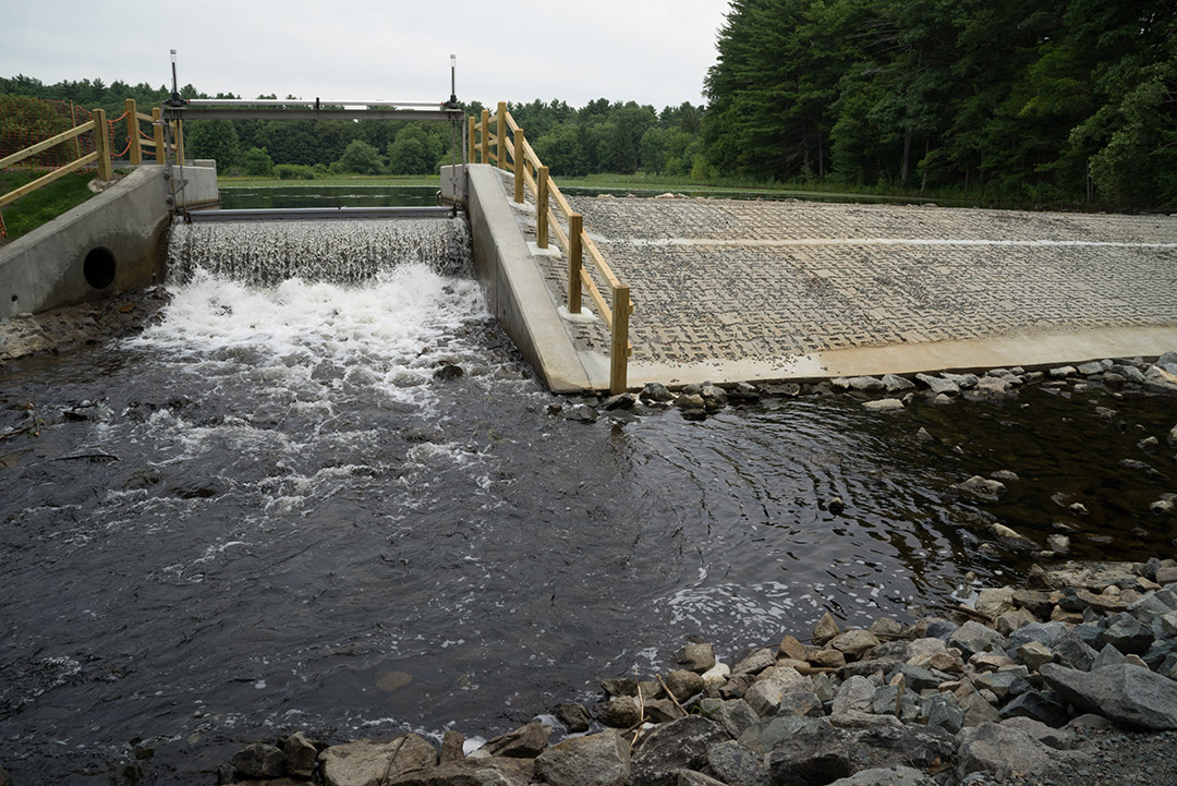 straight-on view of dam from lower side, with water flowing over the spillway