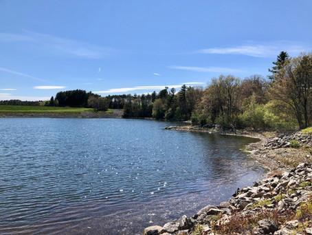 October 3, 2021: Hubbard Woods and Norumbega Reservoir