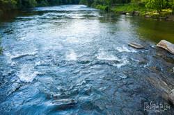 Rapids 6