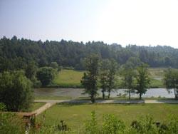 river-view-2