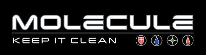 Molecule Logo Black.png