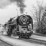 Schwarzweiss-Zug