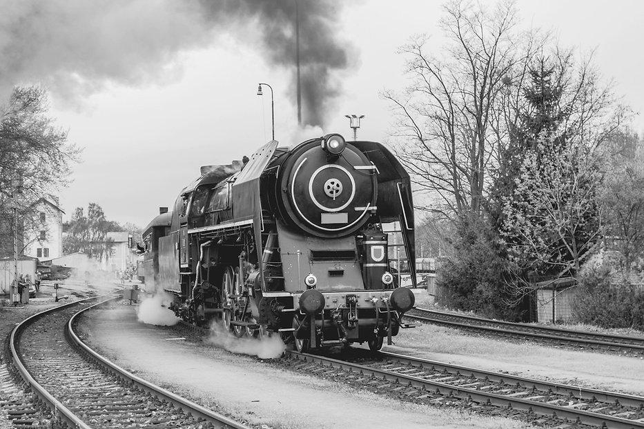 黒と白の列車