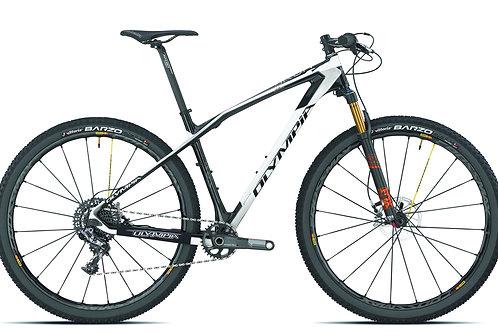 IRON RACE XX1 Carbon