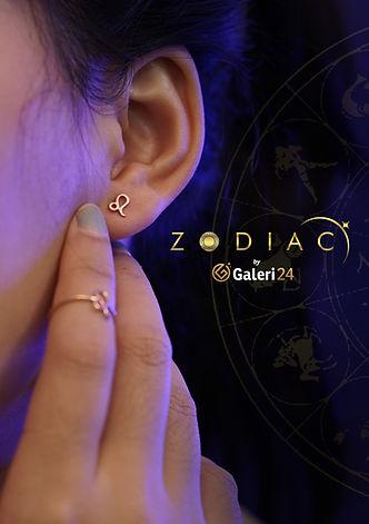 flyer zodiac front.jpg