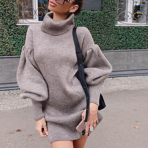 Turtle Neck Women Sweater Dress