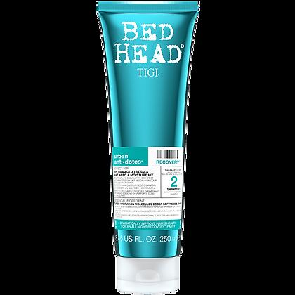 Recovery Shampoo 250ml
