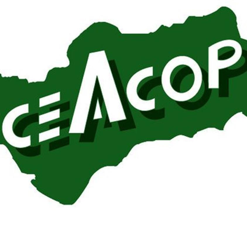 Jornada #BIMCivil en CEACOP